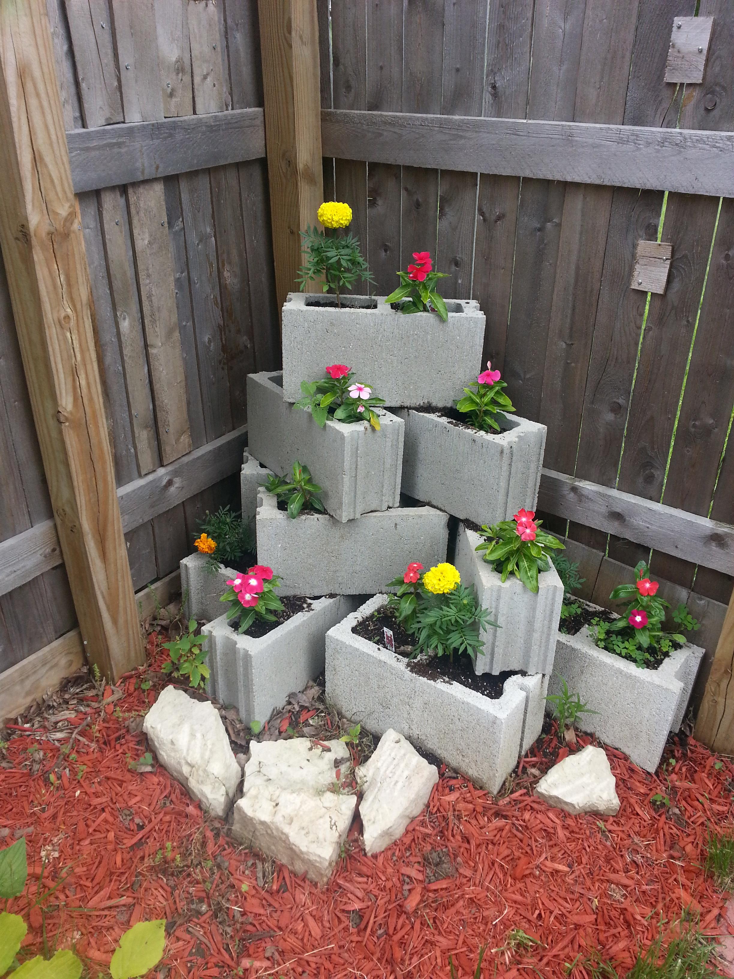 Flowers - Marigolds and Vincas
