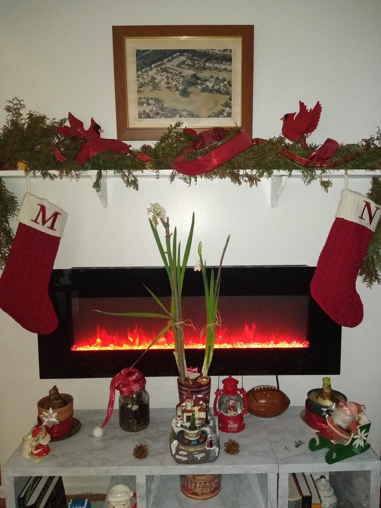 fresh Christmas garland tutorial picture