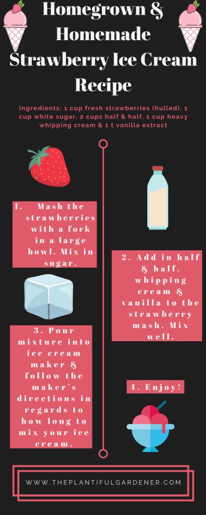 strawberry ice cream recipe infographic