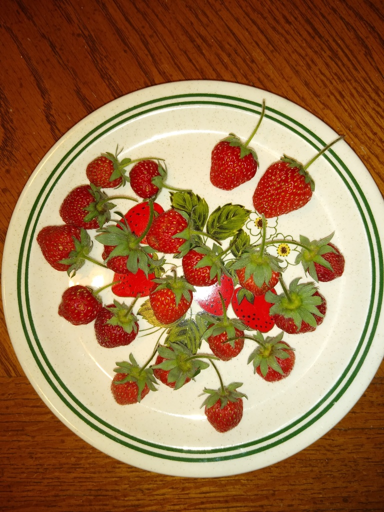 homegrown strawberries picture